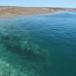 Collier Bay, Montgomery Reef, Red Cone Creek
