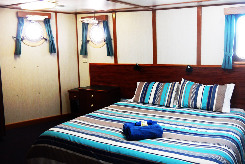 Eco Abrolhos deluxe middle deck cabin