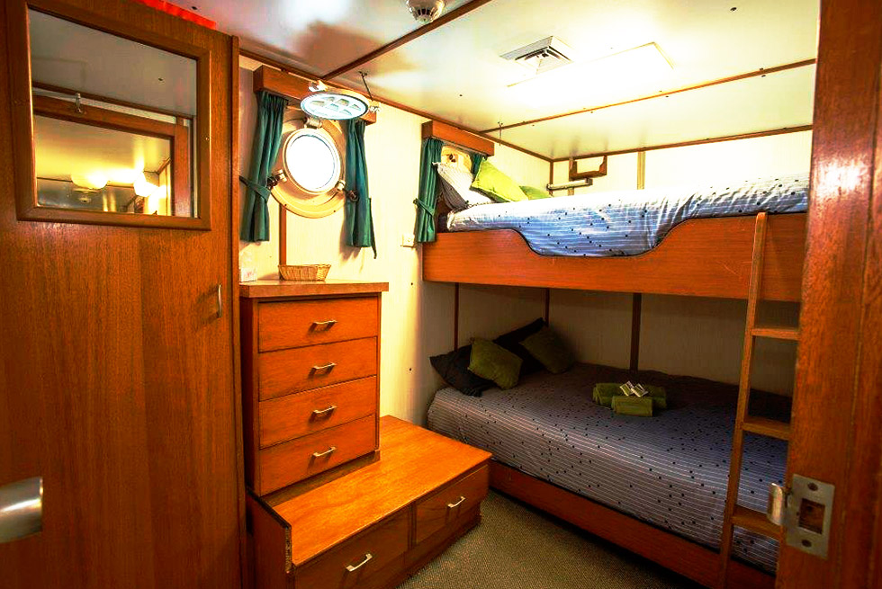 Eco Abrolhos double bed bunk cabin