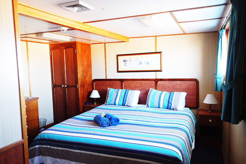 Eco Abrolhos top deck king cabin