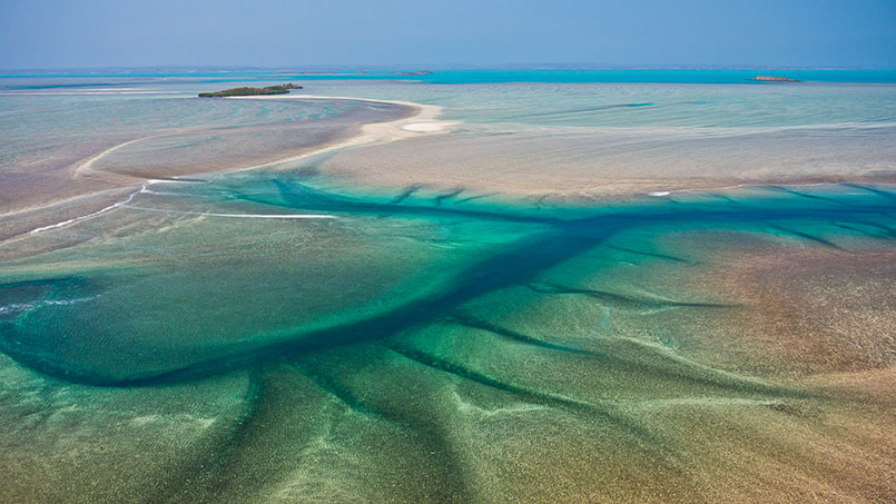 Great Escape Montgomery Reef