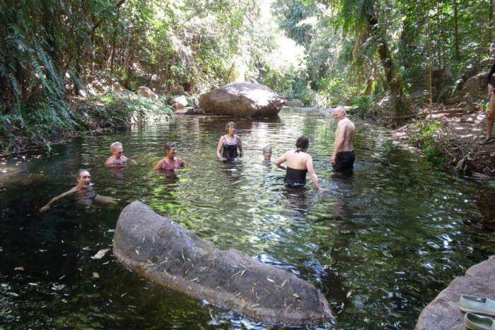 Rainforest water hole