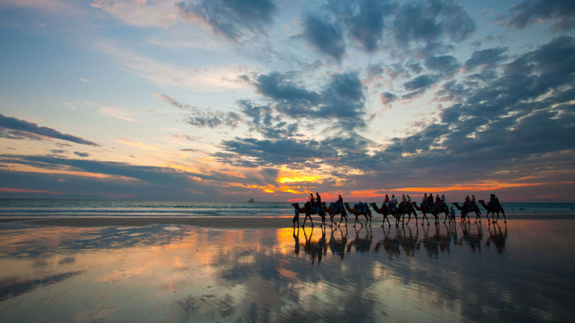 Broome Camel Riding