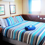 Eco Abrolhos deluxe cabin room