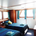 Eco Abrolhos deluxe cabin split beds