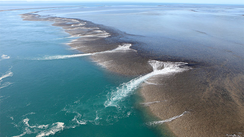 Eco Abrolhos Montgomery reef