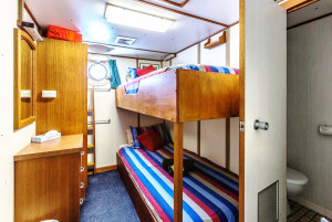 Eco Abrolhos standard lower deck bunk cabin